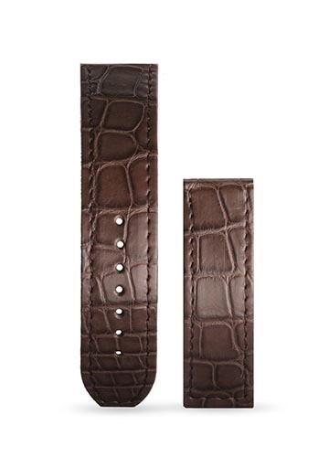 Alligator brun